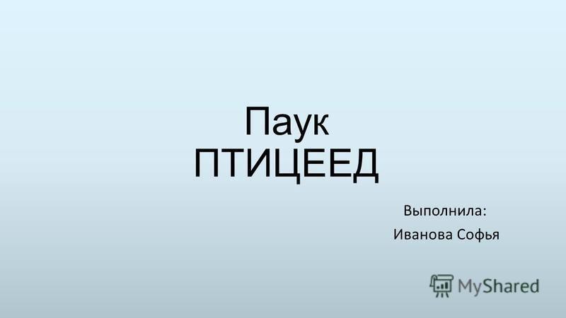 Паук ПТИЦЕЕД Выполнила: Иванова Софья