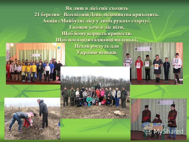 Як лиш в лісі сніг сходить 21 березня - Всесвітній День лісівництва приходить. Акція «Майбутнє лісу у твоїх руках» стартує. І кожен хоче в ліс піти, Щоб йому користь принести. Щоб посадити саджанці маленькі, Нехай ростуть для України-неньки.