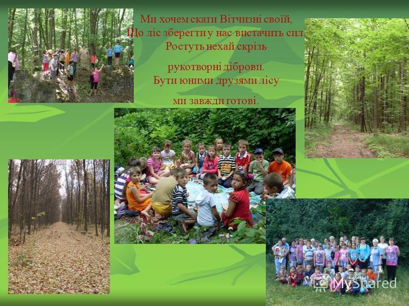 Ми хочем скати Вітчизні своїй, Що ліс зберегти у нас вистачить сил. Ростуть нехай скрізь рукотворні діброви. Бути юними друзями лісу ми завжди готові.