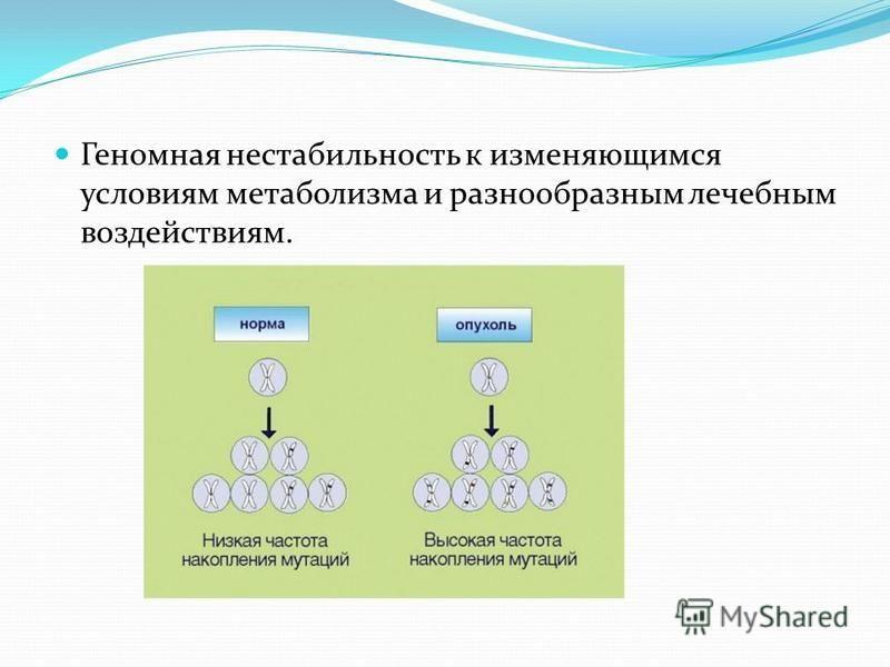 Геномная нестабильность к изменяющимся условиям метаболизма и разнообразным лечебным воздействиям.
