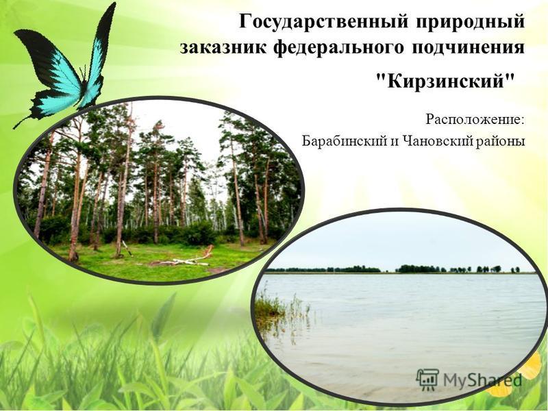 Государственный природный заказнак федерального подчинения Кирзинский Расположение: Барабинский и Чановский районы