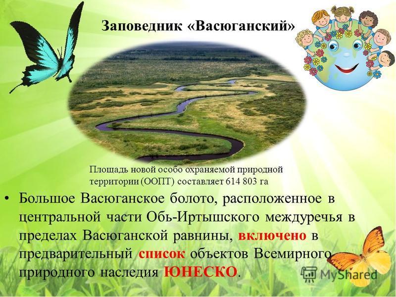 Заповедник «Васюганский» Большое Васюганское болото, расположенное в центральной части Обь-Иртышского междуречья в пределах Васюганской равнины, включено в предварительный список объектов Всемирного природного наследия ЮНЕСКО. Площадь новой особо охр