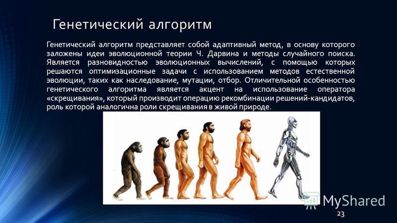 Генетический алгоритм 23 Генетический алгоритм представляет собой адаптивный метод, в основу которого заложены идеи эволюционной теории Ч. Дарвина и методы случайного поиска. Является разновидностью эволюционных вычислений, с помощью которых решаются