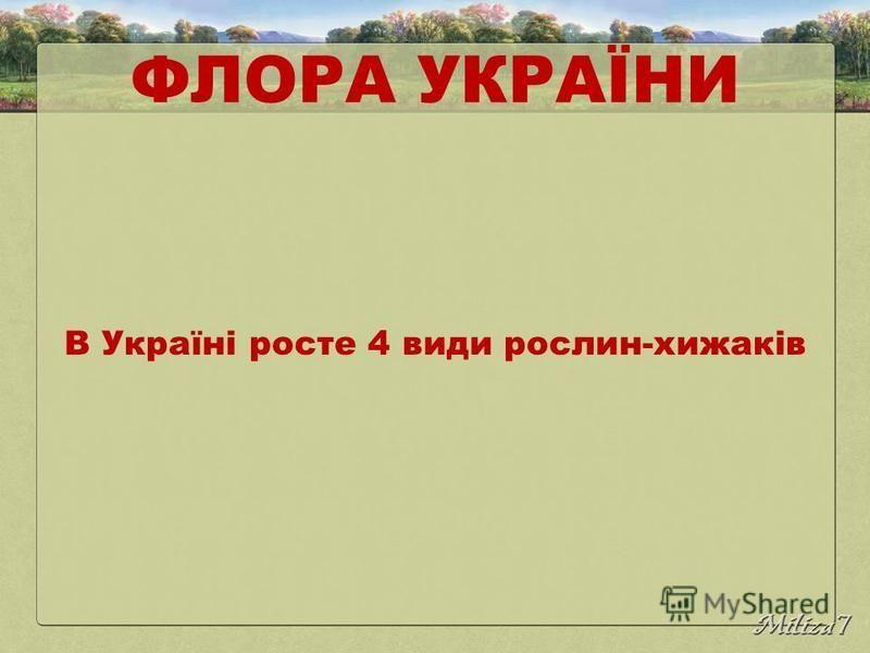 ФЛОРА УКРАЇНИ В Україні росте 4 види рослин-хижаків