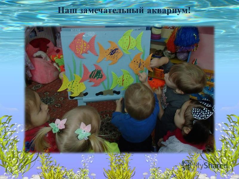 Наш замечательный аквариум!