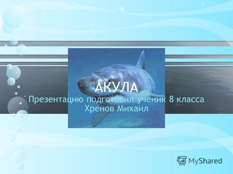 АКУЛА Презентацию подготовил ученик 8 класса Хренов Михаил