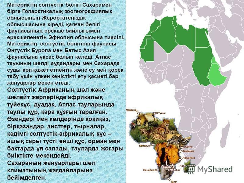 Материктің солтүстік бөлігі Сахарамен бірге Голарктикалық зоогеографиялық облысының Жерортатеңіздік облысшасына кіреді, қалған бөлігі фаунасының ерекше байлығымен ерекшеленетін Эфиопия облысына тиесілі. Материктің солтүстік бөлігінің фаунасы Оңтүстік
