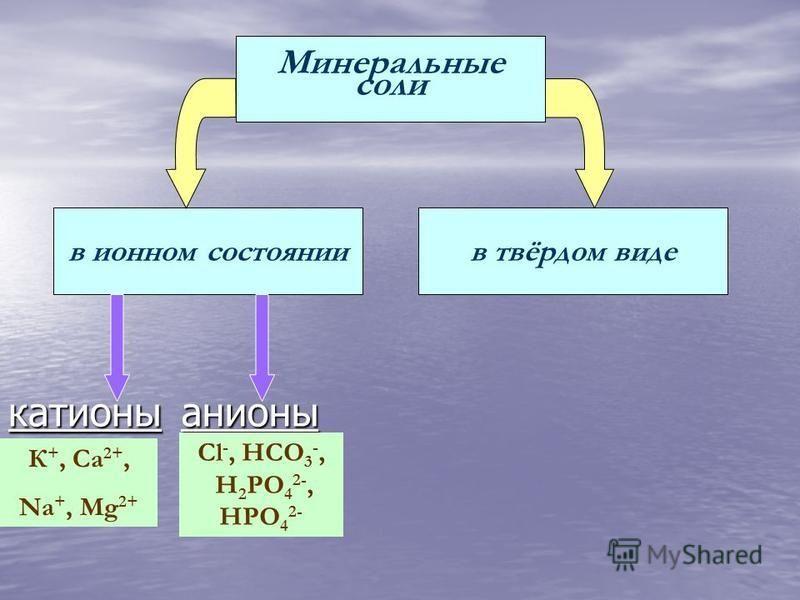 в ионном состоянии в твёрдом виде катионы анионы К +, Ca 2+, Na +, Mg 2+ Сl -, HCO 3 -, H 2 PO 4 2-, HPO 4 2-