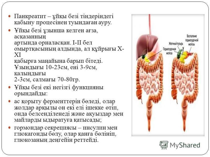 Панкреатит – ұйқы безі тіндеріндегі қабыну процесінен тутындаған ауру. Ұйқы безі ұзынша келген ағза, асқазанның арттында орналасқан. I-II бел омыртқасының алдтында, ал құйрығы X- XI қабырға маңайына барып бітеді. Ұзындығы 10-23 см, ені 3-9 см, қалыңд