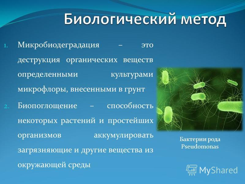 1. Микробиодеградация – это деструкция органических веществ определенными культурами микрофлоры, внесенными в грунт 2. Биопоглощение – способность некоторых растений и простейших организмов аккумулировать загрязняющие и другие вещества из окружающей