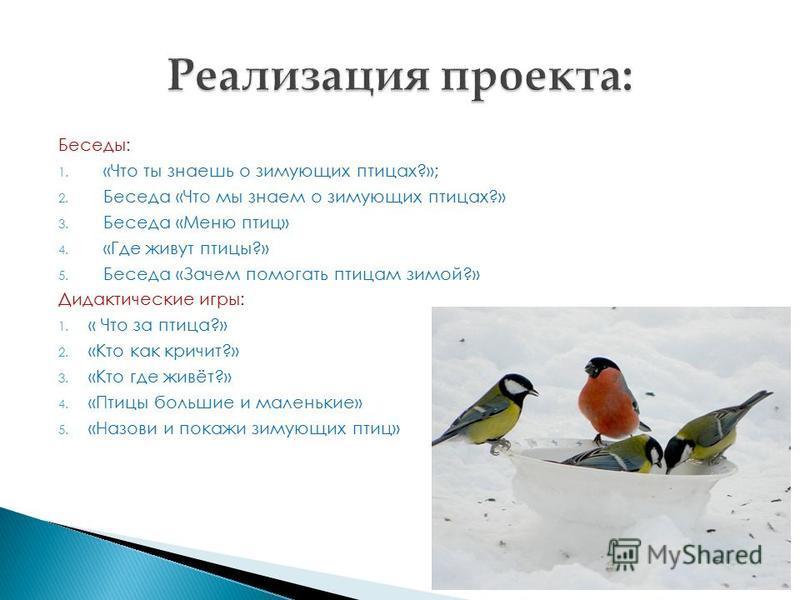 Беседы: 1. «Что ты знаешь о зимующих птицах?»; 2. Беседа «Что мы знаем о зимующих птицах?» 3. Беседа «Меню птиц» 4. «Где живут птицы?» 5. Беседа «Зачем помогать птицам зимой?» Дидактические игры: 1. « Что за птица?» 2. «Кто как кричит?» 3. «Кто где ж