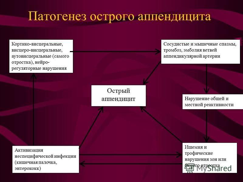 Кортико-висцеральные, висцеро-висцеральные, ауто висцеральные (самого отростка), нейро- регуляторные нарушения Сосудистые и мышечные спазмы, тромбоз, эмболия ветвей аппендикулярной артерии Острый аппендицит Активизация неспецифической инфекции (кишеч