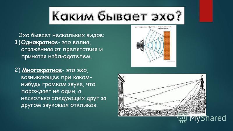 Эхо бывает нескольких видов: 1)Однократное- это волна, отражённая от препятствия и принятая наблюдателем. 2) Многократное- это эхо, возникающее при каком- нибудь громком звуке, что порождает не один, а несколько следующих друг за другом звуковых откл