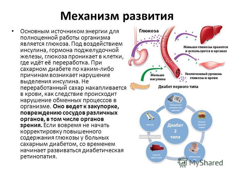 Механизм развития Основным источником энергии для полноценной работы организма является глюкоза. Под воздействием инсулина, гормона поджелудочной железы, глюкоза проникает в клетки, где идёт её переработка. При сахарном диабете по каким-либо причинам