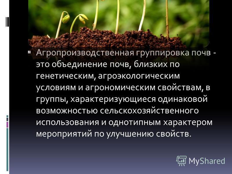 Агропроизводственная группировка почв - это объединение почв, близких по генетическим, агроэкологическим условиям и агрономическим свойствам, в группы, характеризующиеся одинаковой возможностью сельскохозяйственного использования и однотипным характе