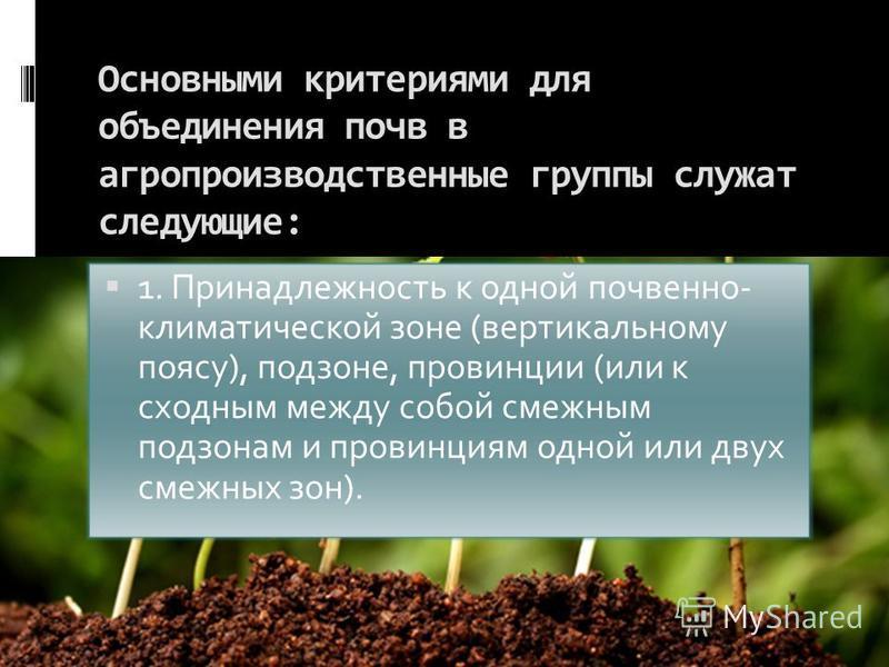 Основными критериями для объединения почв в агропроизводственные группы служат следующие: 1. Принадлежность к одной почвенно- климатической зоне (вертикальному поясу), подзоне, провинции (или к сходным между собой смежным подзонам и провинциям одной