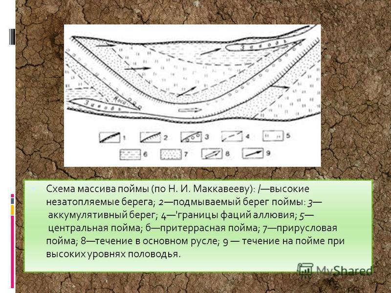 Схема массива поймы (по Н. И. Маккавееву): /высокие незатопляемые берега; 2 подмываемый берег поймы: 3 аккумулятивный берег; 4'границы фаций аллювия; 5 центральная пойма; бпритеррасная пойма; 7 прирусловая пойма; 8 течение в основном русле; 9 течение