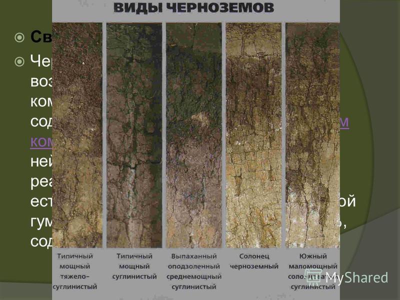 Свойства Чернозёмы обладают хорошими водно- воздушными свойствами, отличаются комковатой или зернистой структурой, содержанием в почвенном поглощающем комплексе от 70 до 90 % кальция, нейтральной или почти нейтральной реакцией, повышенным естественны