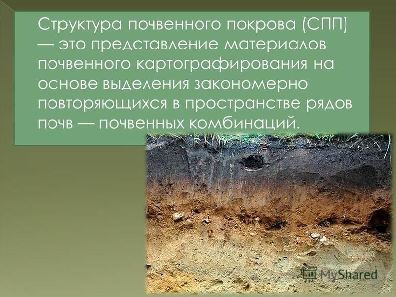 Структура почвенного покрова (СПП) это представление материалов почвенного картографирования на основе выделения закономерно повторяющихся в пространстве рядов почв почвенных комбинаций.