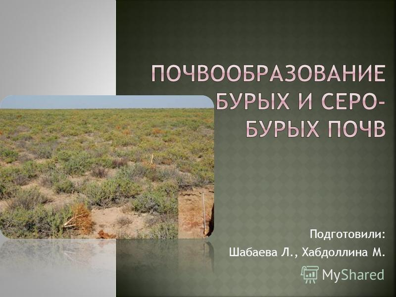 Подготовили: Шабаева Л., Хабдоллина М.