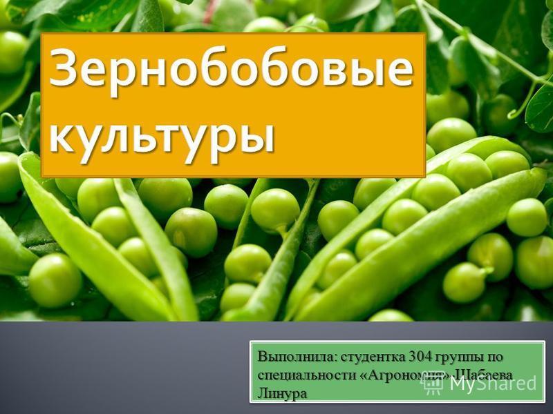Выполнила: студентка 304 группы по специальности «Агрономия»-Шабаева Линура