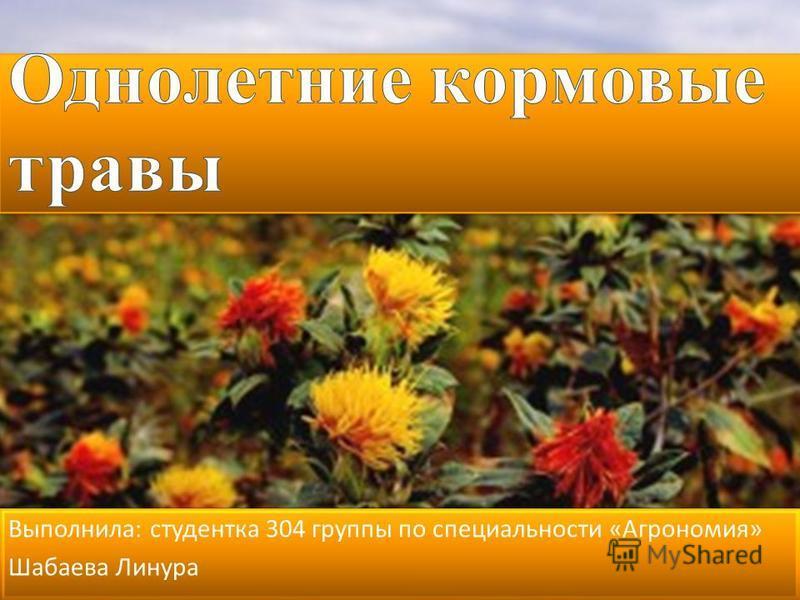 Выполнила : студентка 304 группы по специальности « Агрономия » Шабаева Линура Выполнила : студентка 304 группы по специальности « Агрономия » Шабаева Линура