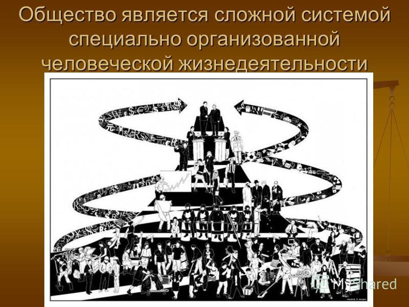 Общество является сложной системой специально организованной человеческой жизнедеятельности