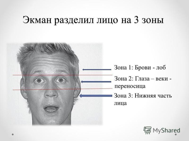 Экман разделил лицо на 3 зоны Зона 1: Брови - лоб Зона 2: Глаза – веки - переносица Зона 3: Нижняя часть лица