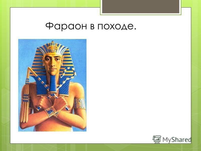 Фараон в походе.