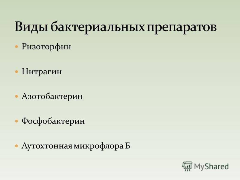 Ризоторфин Нитрагин Азотобактерин Фосфобактерин Аутохтонная микрофлора Б