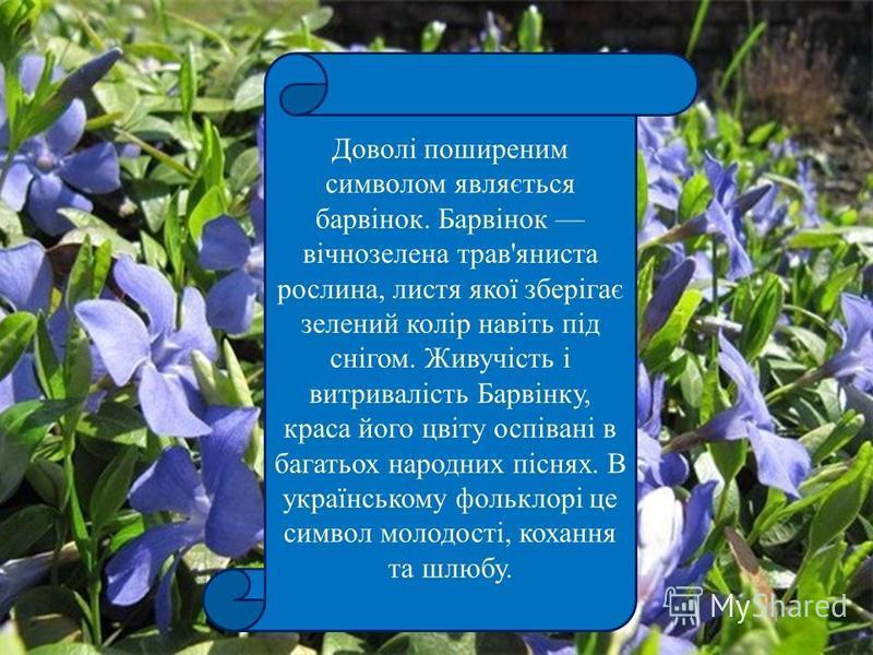 Доволі поширеним символом являється барвінок. Барвінок вічнозелена трав'яниста рослина, листя якої зберігає зелений колір навіть під снігом. Живучість і витривалість Барвінку, краса його цвіту оспівані в багатьох народних піснях. В українському фольк