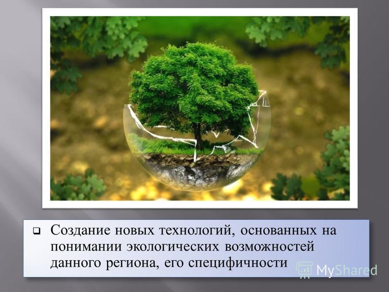 Создание новых технологий, основанных на понимании экологических возможностей данного региона, его специфичности