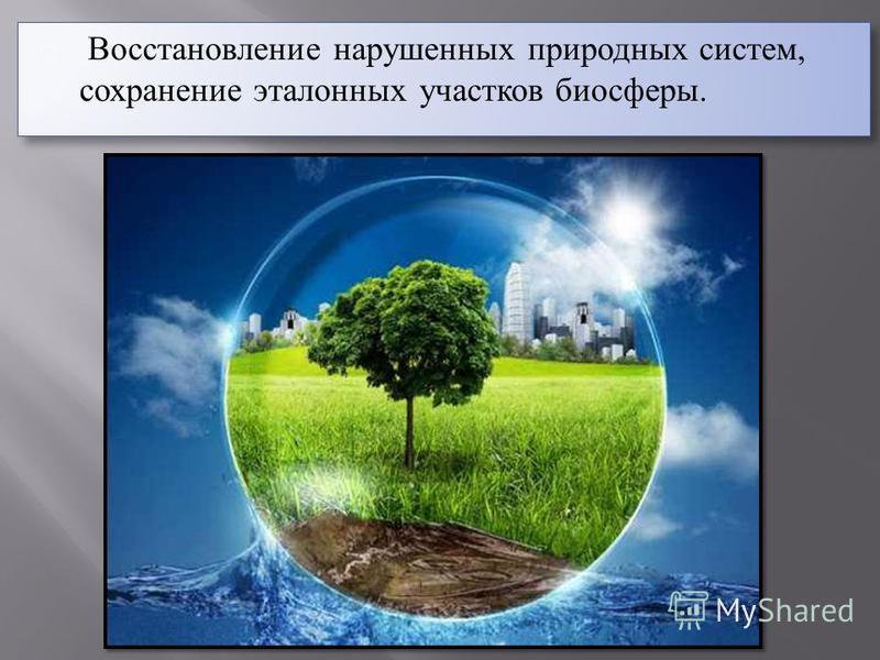 Восстановление нарушенных природных систем, сохранение эталонных участков биосферы.
