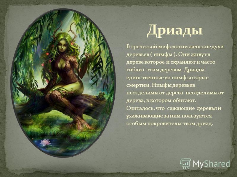 В греческой мифологии женские духи деревьев ( нимфы ). Они живут в дереве которое и охраняют и часто гибли с этим деревом Дриады единственные из нимф которые смертны. Нимфы деревьев неотделимы от дерева неотделимы от дерева, в котором обитают. Считал