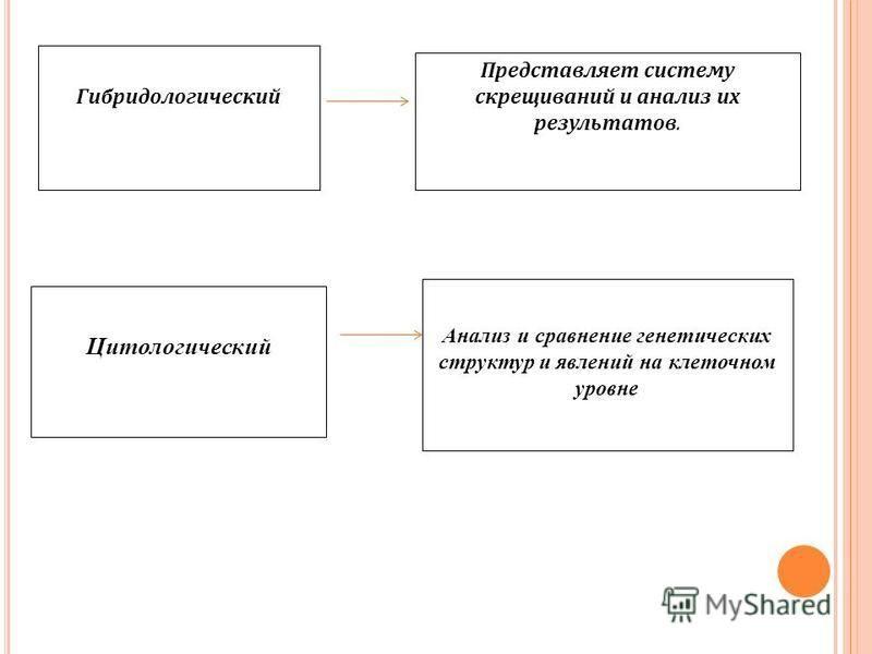 М ЕТОДЫ ГЕНЕТИЧЕСКИХ ИССЛЕДОВАНИЙ Просмотр флеш - презентации. Составление схемы- соответствия
