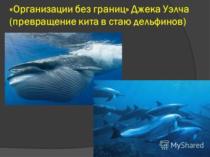 «Организации без границ» Джека Уэлча (превращение кита в стаю дельфинов)
