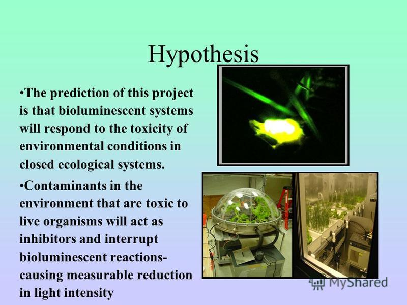 Hypothesis The prediction of this project is that bioluminescent systems will respond to the toxicity of environmental conditions in closed ecological systems. Contaminants in the environment that are toxic to live organisms will act as inhibitors an