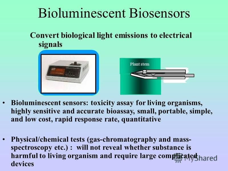 Bioluminescent Biosensors Convert biological light emissions to electrical signals Bioluminescent sensors: toxicity assay for living organisms, highly sensitive and accurate bioassay, small, portable, simple, and low cost, rapid response rate, quanti