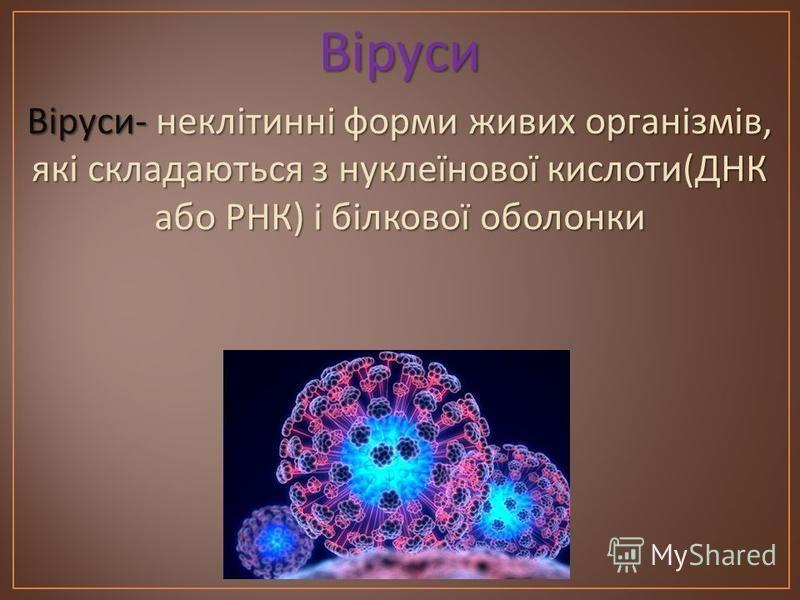 Віруси Віруси - неклітинні форми живих організмів, які складаються з нуклеїнової кислоти ( ДНК або РНК ) і білкової оболонки