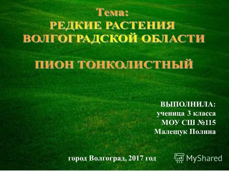 ВЫПОЛНИЛА: ученица 3 класса МОУ СШ 115 Малещук Полина город Волгоград, 2017 год