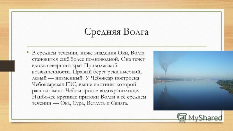Средняя Волга В среднем течении, ниже впадения Оки, Волга становится ещё более полноводной. Она течёт вдоль северного края Приволжской возвышенности. Правый берег реки высокий, левый низменный. У Чебоксар построена Чебоксарская ГЭС, выше плотины кото