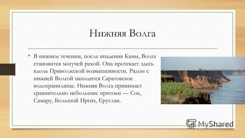 Нижняя Волга В нижнем течении, после впадения Камы, Волга становится могучей рекой. Она протекает здесь вдоль Приволжской возвышенности. Рядом с нижней Волгой находится Саратовское водохранилище. Нижняя Волга принимает сравнительно небольшие притоки