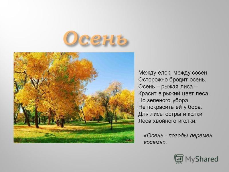 «Осень - погоды перемен восемь». Между ёлок, между сосен Осторожно бродит осень. Осень – рыжая лиса – Красит в рыжий цвет леса, Но зеленого убора Не покрасить ей у бора. Для лисы остры и колки Леса хвойного иголки.