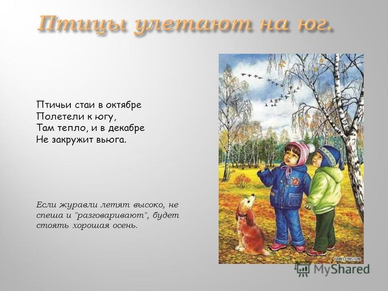 Птичьи стаи в октябре Полетели к югу, Там тепло, и в декабре Не закружит вьюга. Если журавли летят высоко, не спеша и разговаривают, будет стоять хорошая осень.