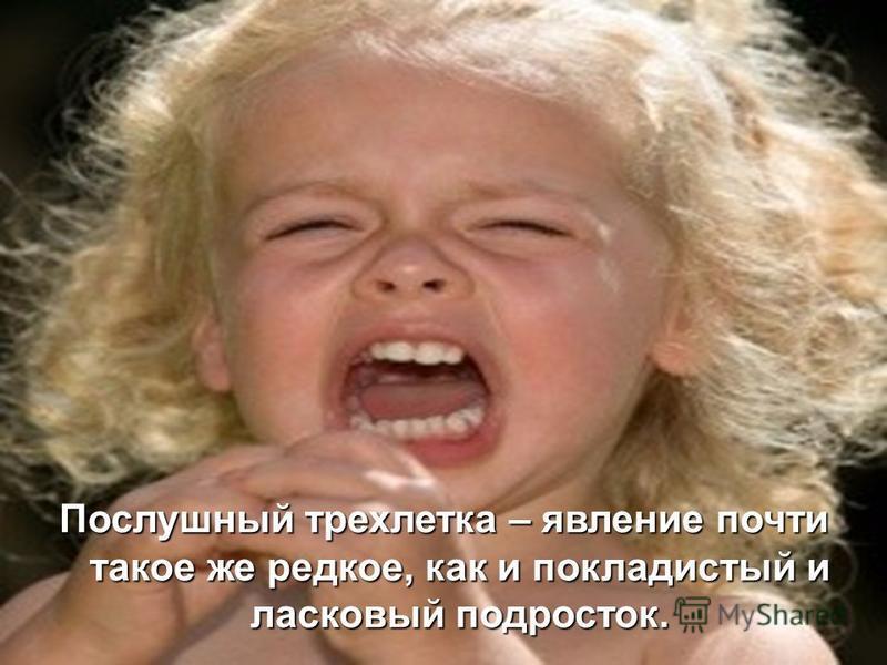 Послушный трехлетка – явление почти такое же редкое, как и покладистый и ласковый подросток.