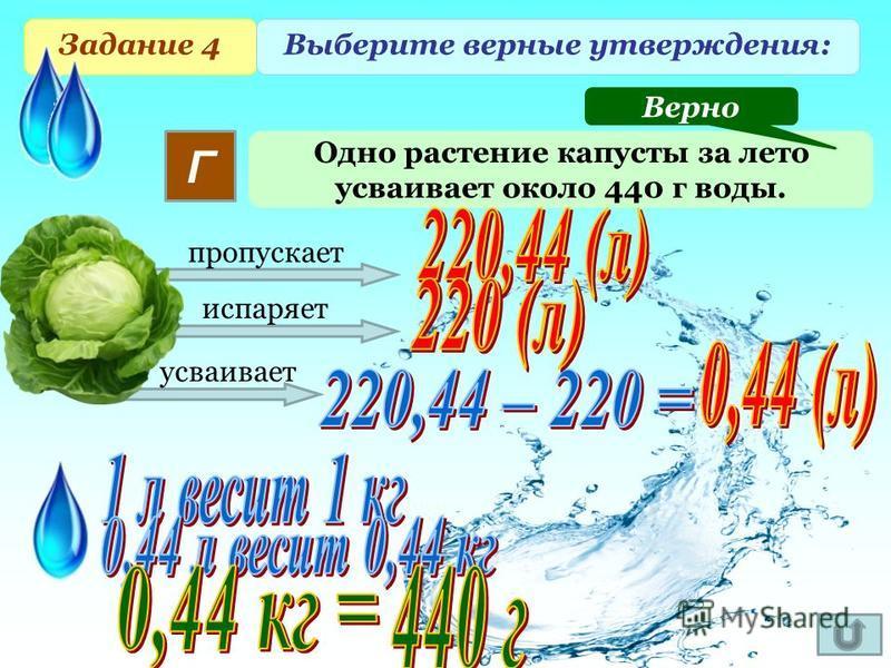 Задание 4 Выберите верные утверждения: Одно растение капусты за лето усваивает около 440 г воды. Г Верно пропускает испаряет усваивает