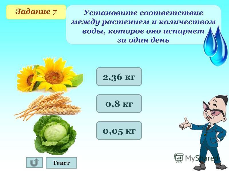 2360 г 800 г 50 г Задание 7 Установите соответствие между растением и количеством воды, которое оно испаряет за один день Текст 2,36 кг 0,8 кг 0,05 кг