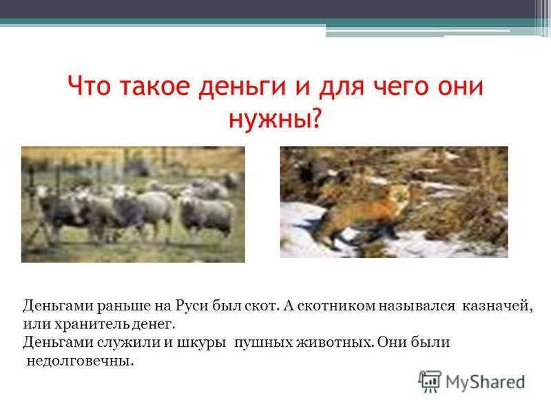 Что такое деньги и для чего они нужны? Деньгами раньше на Руси был скот. А скотником назывался казначей, или хранитель денег. Деньгами служили и шкуры пушных животных. Они были недолговечны.