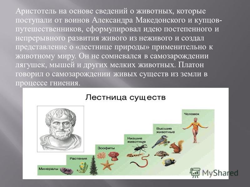 Аристотель на основе сведений о животных, которые поступали от воинов Александра Македонского и купцов - путешественников, сформулировал идею постепенного и непрерывного развития живого из неживого и создал представление о « лестнице природы » примен
