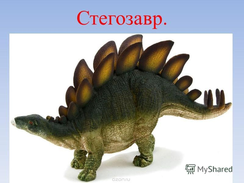 Стегозавр.